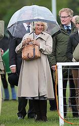 The Duchess of Cornwall shelters from the rain  at the Royal Windsor Horse Show, Friday, May 10th 2013.  Photo by: Stephen Lock / i-Images