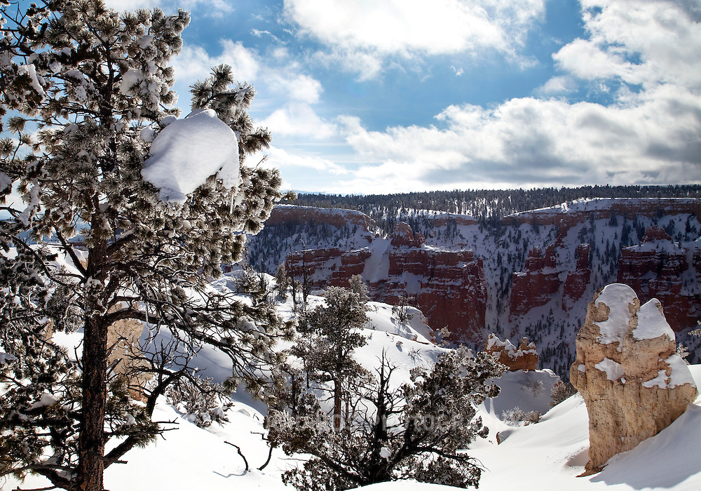 Winter in Bryce Canyon National Park Utah.