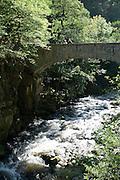 Brücke, Bodetal, Thale, Harz, Sachsen-Anhalt, Deutschland | bridge, Bode Valley, Thale, Harz, Saxony-Anhalt, Germany
