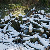 2009_12_19_morden_snow
