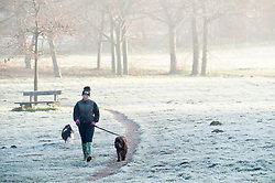 © Licensed to London News Pictures. 14/02/2019. Sidcup.<br /> A cold and frosty start to Valentines day at Footscray Meadows in Sidcup this morning for this dog walker.  Photo credit: Grant Falvey/LNP