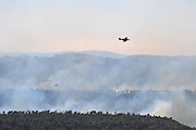 Aircraft drops fire retardant on the wildfire, Israel, Haifa Carmel Mountain Forest, 42 Prison Guards killed on bus as huge forest fire rages on the Carmel Mountain South of Haifa. Fire engulfs the Damon Prison. Aeroplanes from various countries have come to help extinguish the flames .