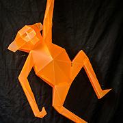 Monkey | LAVA