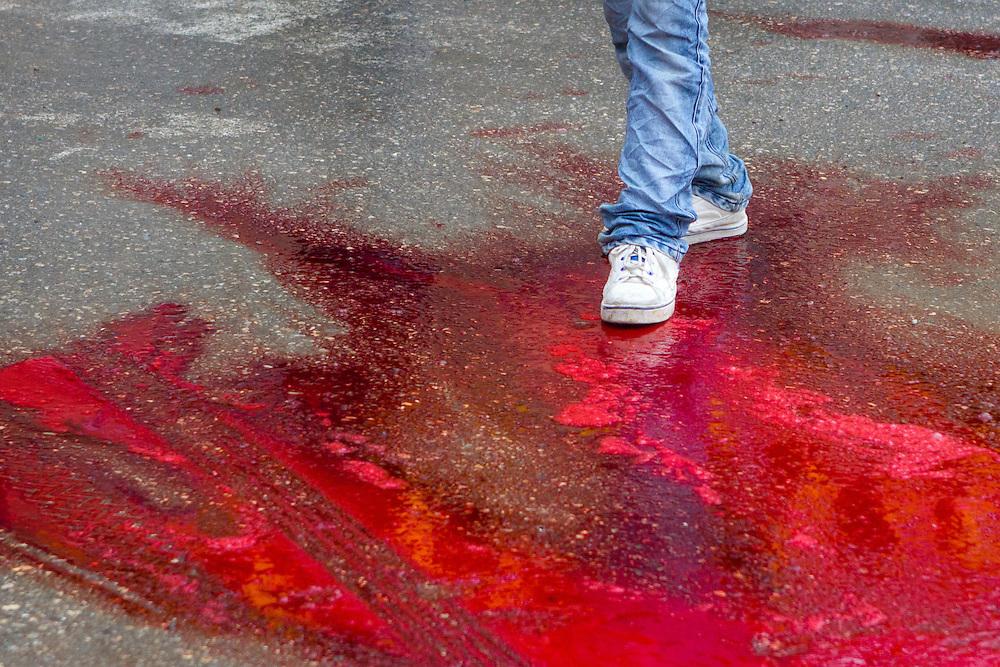 A young muslim man walks through sacrificial blood, on the Day of Ashura, in Bijar, Kurdistan Province, Iran.