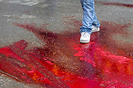 A young muslim man walks through sacrificial blood, on the Day of Ashura, in Bijar, Kurdistan Province, Iran.