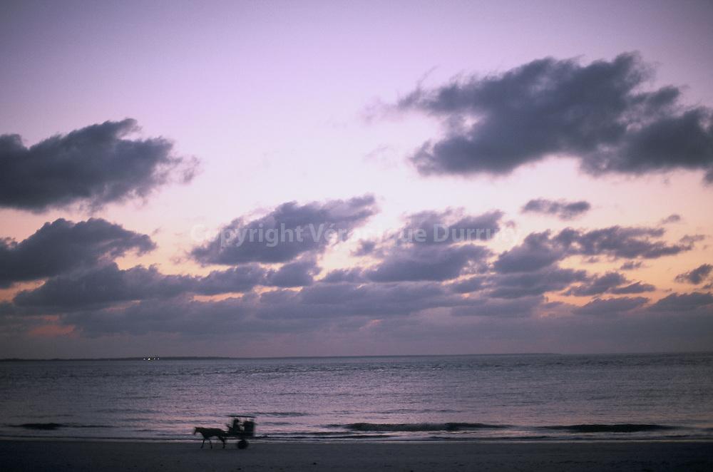 TWILIGHT, Algodoal island, Brazil // ILE D'ALGODOAL AU CREPUSCULE, AMAZONIE ATLANTIQUE, BRESIL