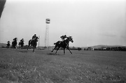 "08/05/1965<br /> 05/08/1965<br /> 08 May 1965<br /> The 1965 Gold Flake Meeting at Leopardstown Racecourse, Co. Dublin. Image shows Mr A.J. Russell's ""Scotch Corner"",(J.M. Murtagh up) winning the Bristol Handicap from ""Fighting Spirit"" (owned: J. O'Connell) and ""Gambetto"" (N. Brennan up, owned Jack White)."