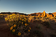 Mules Ears catch first light along with Temple of the Sun on the Cathedral Valley Loop in Capitol Reef National Park, Utah
