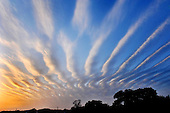Wave Clouds Appear in the sky over China