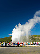 Old Faithful geyser erupts in Yellowstone National Park, Wyoming, United States.