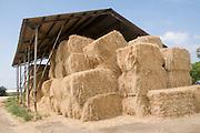 Israel, Upper Galilee, Kibbutz Amiad, Bales of Straw in a shed