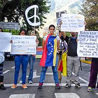 Un grupo de manifestantes protestan pacificamente en una calle de Altamira, con consignas, banderas y signos de la paz. Protestas en Venezuela. Venezuelans protest en masse in rival rallies. Plaza Altamira. Caracas, 29 de Marzo del 2014. Jimmy Villalta