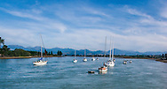 Scenes from the harbor of Mapua, New Zealand