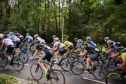 Peloton climb through the trees at Boels Rental Ladies Tour Stage 6 a 159.7 km road race staring and finishing in Sittard, Netherlands on September 3, 2017. (Photo by Sean Robinson/Velofocus)
