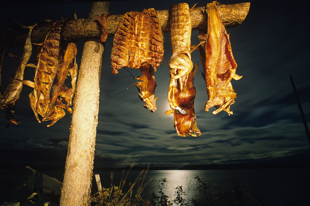 USA, Alaska, Smoked salmon hangs from drying rack at fish camp along Yukon River near Fort Yukon at night
