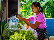 25 NOVEMBER 2017 - YANGON, MYANMAR: A woman bundles herbs she is taking into Yangon to sell in a market while she rides the Yangon Circular Train into the city. The Yangon Circular Train is a 45.9-kilometre (28.5 mi) 39-station two track loop system connects satellite towns and suburban areas to downtown. The train was built during the British colonial period, the second track was built in 1954. Trains currently run both directions (clockwise and counter-clockwise) around the city. The trains are the least expensive way to get across Yangon and they are very popular with Yangon's working class. About 100,000 people ride the train every day. A a ticket costs 200 Kyat (about .17¢ US) for the entire 28.5 mile loop.    PHOTO BY JACK KURTZ