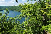 Blick auf Edersee, Naturschutzgebiet Kahle Haardt bei Scheid am Edersee, Nordhessen, Hessen, Deutschland | view on Edersee, nature reserve Kahle Haardt near Scheid on Lake Eder, Hesse, Germany