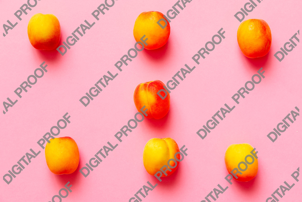 Apricots set of six  isolated over a fuscia background viewed from above, flatlay style