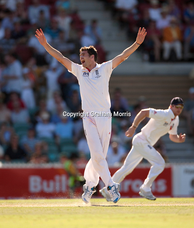 James Anderson appeals during the second Ashes Test Match between Australia and England at the Adelaide Oval. Photo: Graham Morris (Tel: +44(0)20 8969 4192 Email: sales@cricketpix.com) 3/12/10