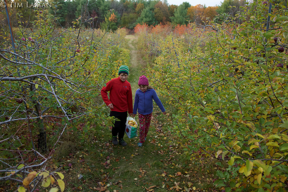 Siblings caring apples after a day of apple picking.