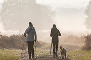 UNITED KINGDOM, London: 22 November 2018 Early morning walkers and their dog make their way through a frosty Richmond Park during sunrise this morning. Temperatures sunk to zero degrees in the capital last night. Rick Findler  / Story Picture Agency