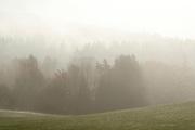 Landschaft im Nebel, Bayerischer Wald, Bayern, Deutschland | Landscape in the Mist, Bavarian Forest, Bavaria, Germany