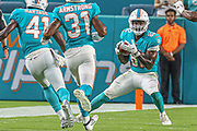Aug 22, 2019; Miami Gardens, FL USA;  Miami Dolphins wide receiver Preston Williams (82) catches the punt from Jacksonville Jaguars punter Logan Cooke (9) during an NFL preseason game at Hard Rock Stadium. The Dolphins beat the Jaguars 22-7. (Kim Hukari/Image of Sport)