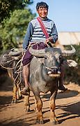 Country man riding a buffalo (Myanmar)