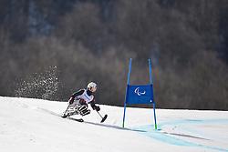 Yoshiko Tanaka, Women's Giant Slalom at the 2014 Sochi Winter Paralympic Games, Russia
