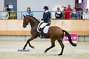 Joyce Lenaerts - George<br /> KWPN Kampioenschappen 2016<br /> © DigiShots