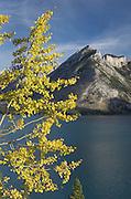 Lake Minnewanka Banff National Park