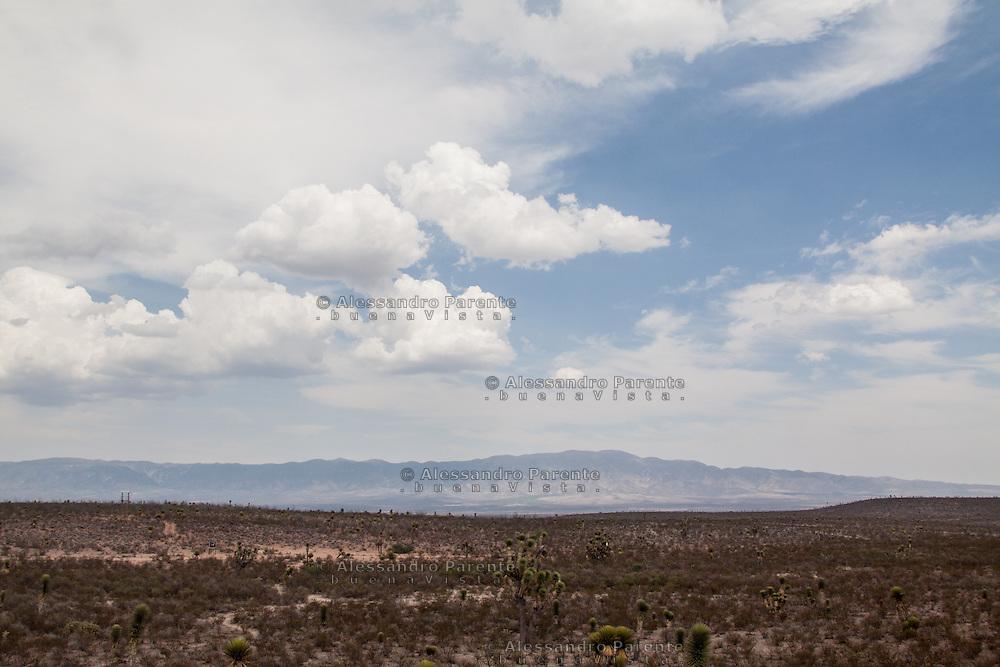 Paesaggio di wirikuta.<br /> Wirikuta landscape.