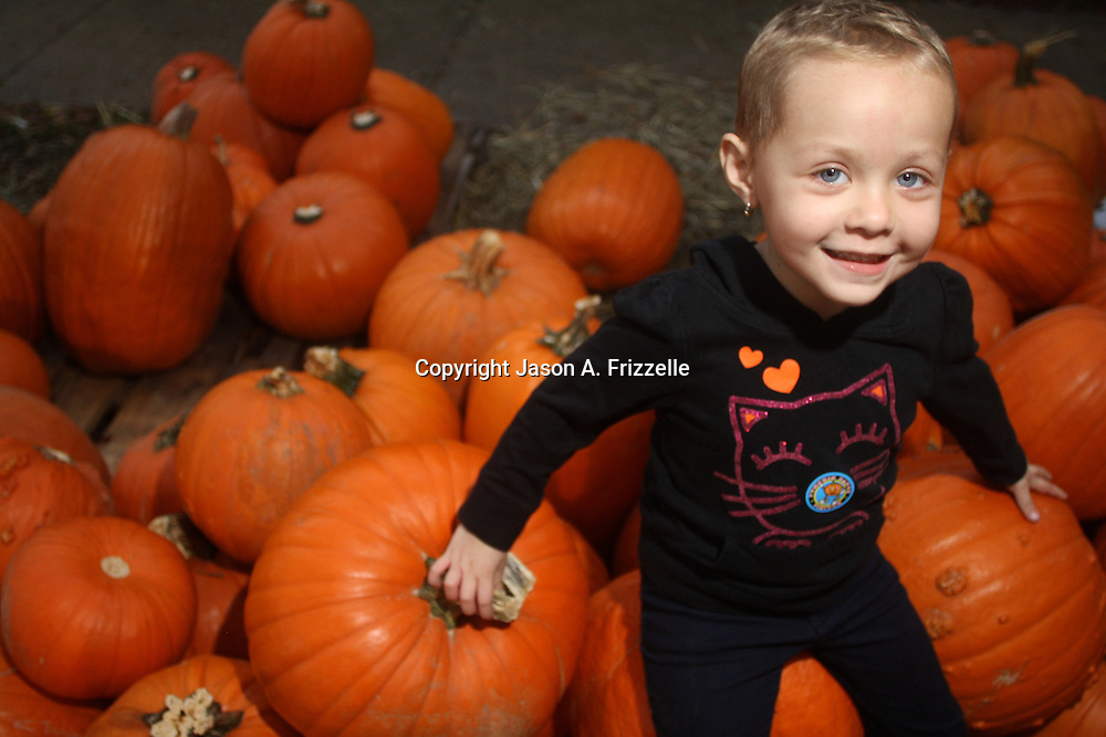Play portraits of Larue in the pumpkin patch as well as Lani and Rory.