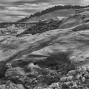 The rocky shores of Moss Cove at Point Lobos. Carmel, CA. Point Lobos holds a special place in the history of photography. It's fog-enshrouded shores were a subject of photographers such as Edward Weston, Ansel Adams and Minor White.