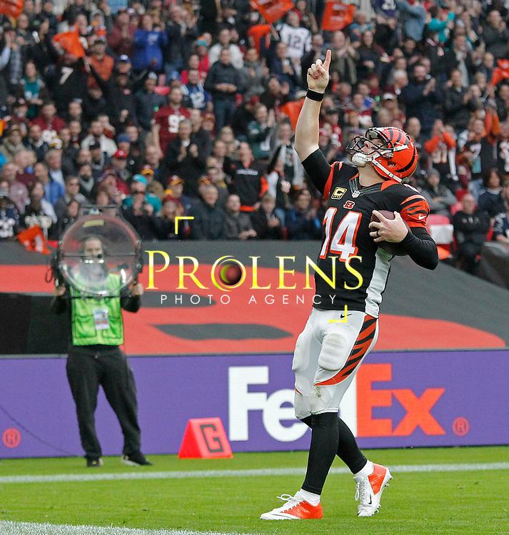 NFL International Series 2016 Houston Texans @ Oakland Raiders   30th OCT 2016<br /> <br /> Cincinnati Bengals Quarterback Andy Dalton (14) celebrates a touchdown  during game 17 of the NFL International Series between the Houston Texans and Oakland Raiders, From Wembley Stadium, London.<br /> <br /> Pic Micthell Gunn / PLPA? ProLens Photo Agency.<br /> Sunday 30 October 2016