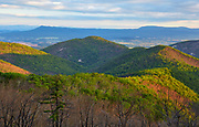 Springtime view from Two Mile Run overlook along Skyline Drive with Massanutten Mountain in the background