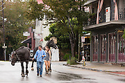 Workers take draft horses for a walk as flooding shut down the tourist carriage tours in the historic district as Hurricane Joaquin brings heavy rain, flooding and strong winds as it passes offshore October 4, 2015 in Charleston, South Carolina.