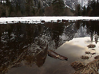 Winter Reflection, Yosemite National Park, California