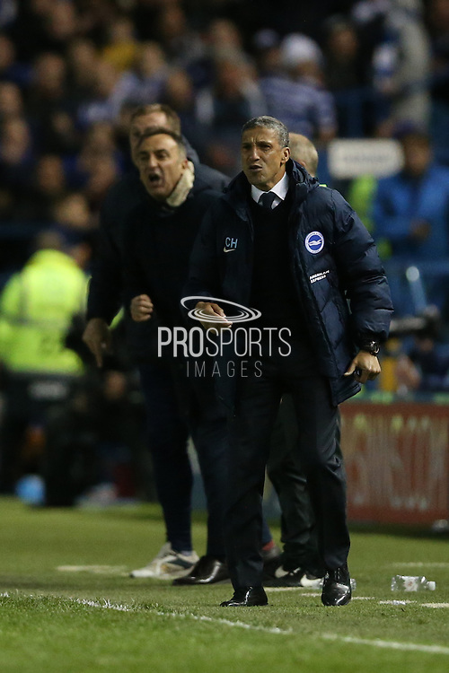 Brighton Manager, Chris Hughton and Sheffield Wednesday head coach Carlos Carvalhal during the Sky Bet Championship Play Off First Leg match between Sheffield Wednesday and Brighton and Hove Albion at Hillsborough, Sheffield, England on 13 May 2016.