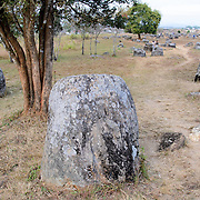 A dirt path among the stone jars at Site 1 of the Plain of Jars in north-central Laos. Much remains unknown about the age and purpose of the thousands of stone jars clustered in the region. Most accounts date them to at least a couple of thousand years ago and theories have been put forward that they were used in burial rituals.