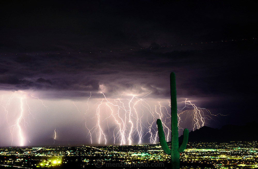 Summer lightning storm over Tucson, Arizona from Tumamoc Hill with Saguaro cactus. Storms erupt regularly during Arizona summers due to the moist air that flows in from the Gulf of California then collides with nearby mountains and is forced upward, where it condenses into thunderclouds. This photo was made with a five-minute time exposure. Tucson, Arizona, USA. 1992..
