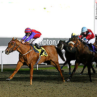 Greyfriarschorista and Robert Tart winning the 8.50 race