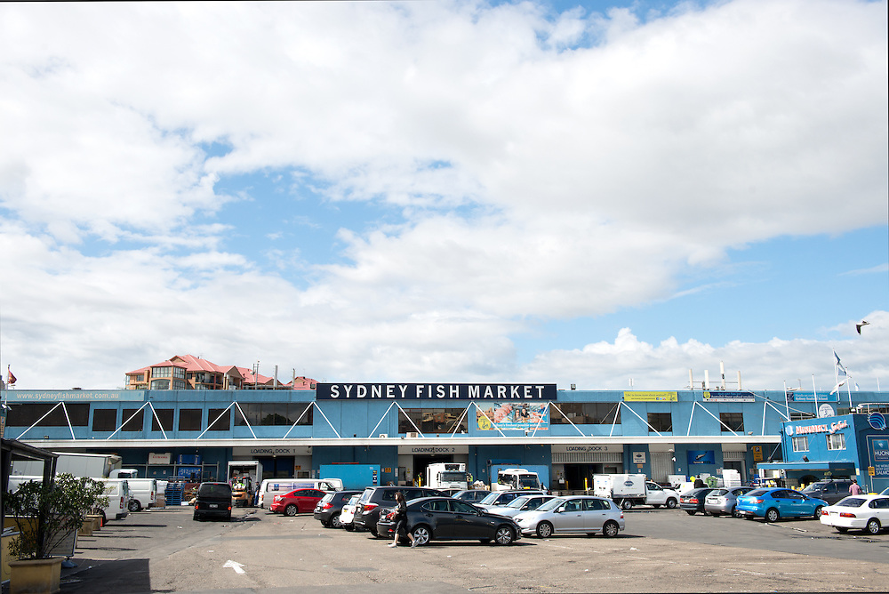 Exterior of Sydney Fish Market