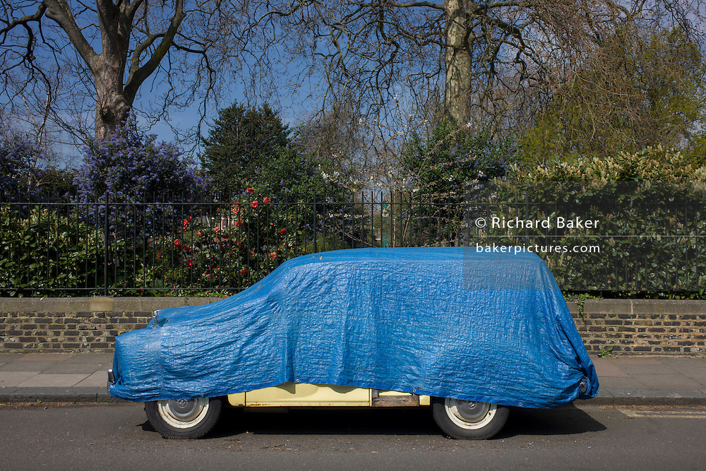 A blue tarpaulin covers and protects a yellow classic Morris Minor car, parked in a south London street.