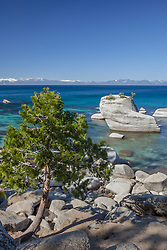 """Tree at Bonsai Rock 1"" - Photograph of a tree in front of the famous Bonsai Rock along the East shore of Lake Tahoe."