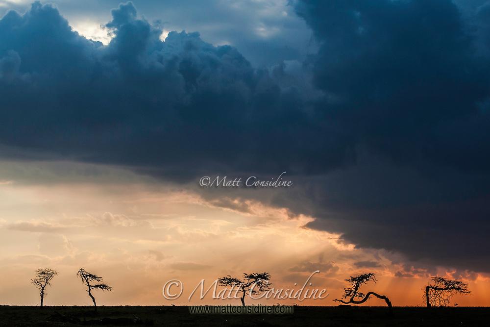 Dramatic storm with orange sky and threatening clouds over the Masai Mara Reserve, Kenya, Africa (photo by Wildlife Photographer Matt Considine)