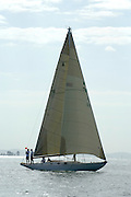 Little Jim (A16), Before the start of the around Rangitoto race of the Lindauer Classic Yacht Regatta. 18/2/2006
