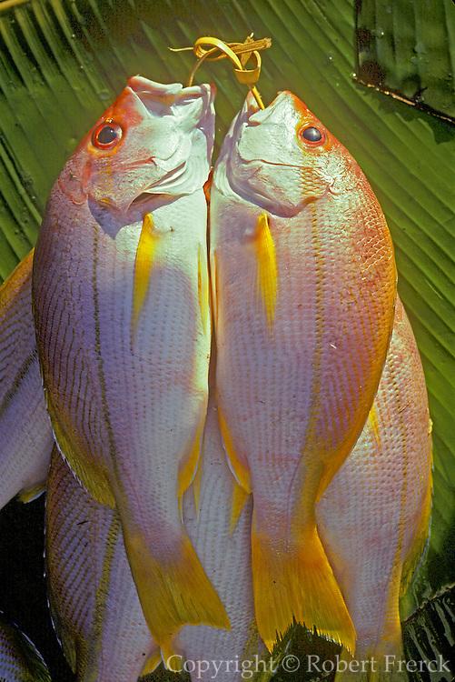 PHILIPPINES, MINDANAO Fish for sale at market in Zamboanga