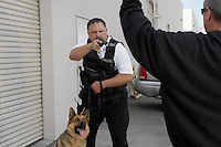 Thief with raised arms and security guard with dog