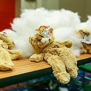 Cardinal Health RBC 2016. Camp Cardinal Rompers, Navy Pier Activities - Build a Bear. Photo by Alabastro Photography.